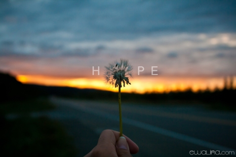 #BloggiteBits-Give Hope